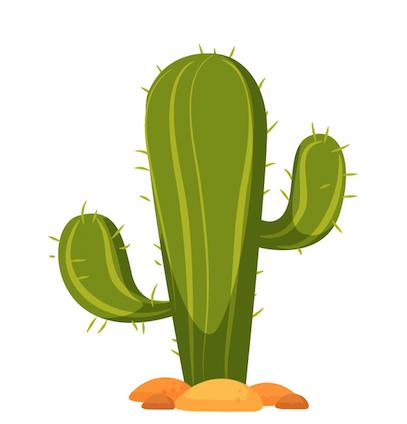 Beware of the Cactuses RCC